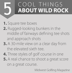 5 Cool Things About Wild Rock